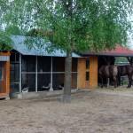 Obecnie Maciej Jaros jedynie dogląda biznesu i zajmuje się swoim hobby – końmi.